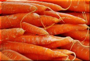 Carrots up close